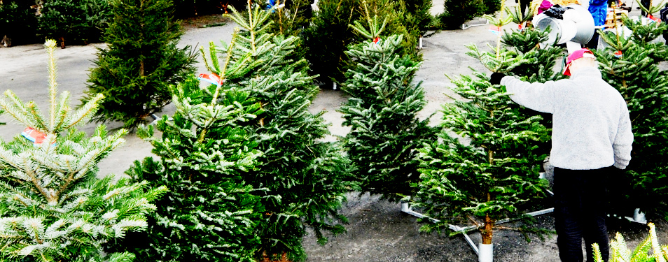 Julemarked søndag 13. desember